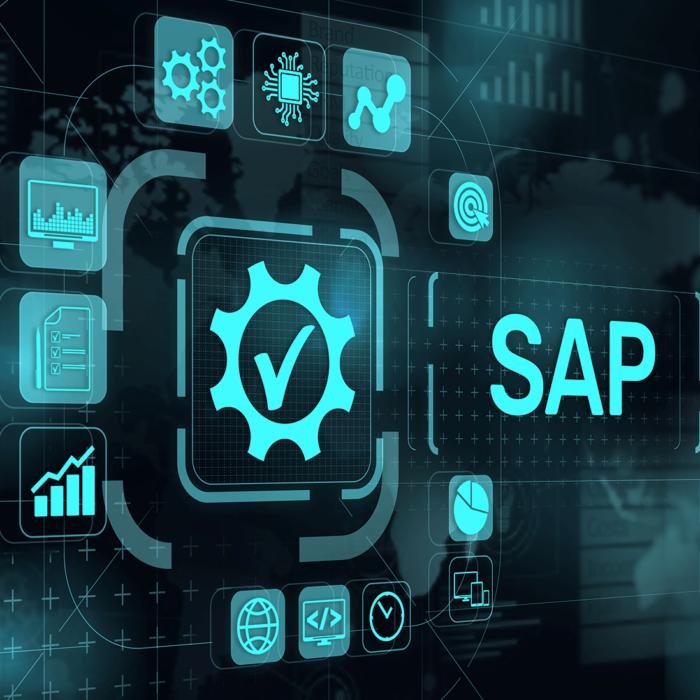 SAP-Schnittstelle sensatus_d.vinci